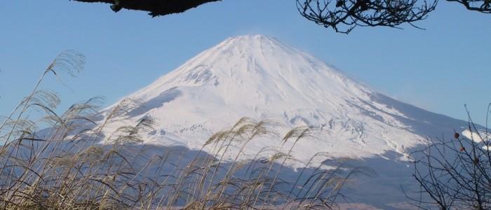 Fuji from Tozanso
